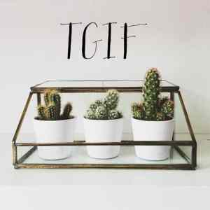 TGIF! Welcome to the weekend 03