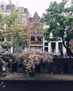 Diary week 18: Workshop 'kwaliteiten', een nieuw gezond dieet & shoppen in Antwerpen