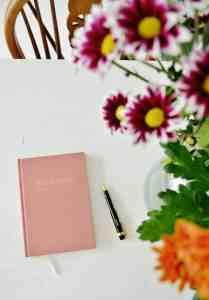 Agenda tip: The Dear Diary agenda