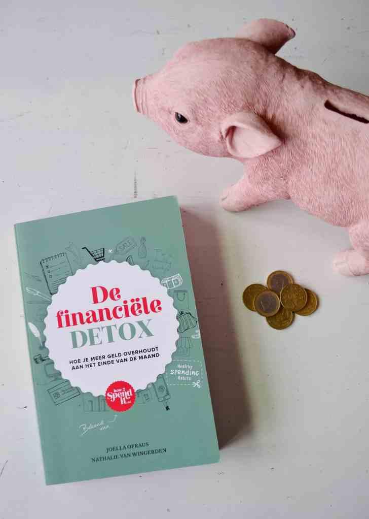 financiele detox