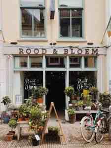 Hotspot: Rood en Bloem plantenzaak in Utrecht
