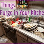 Purge Kitchen