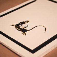 liam morgan gecko death starvation