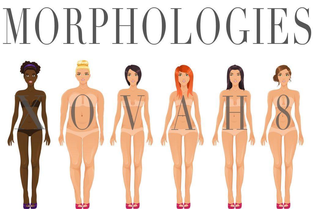 [:fr]Morphologie de votre corps, apprenez à connaitre vos formes[:]