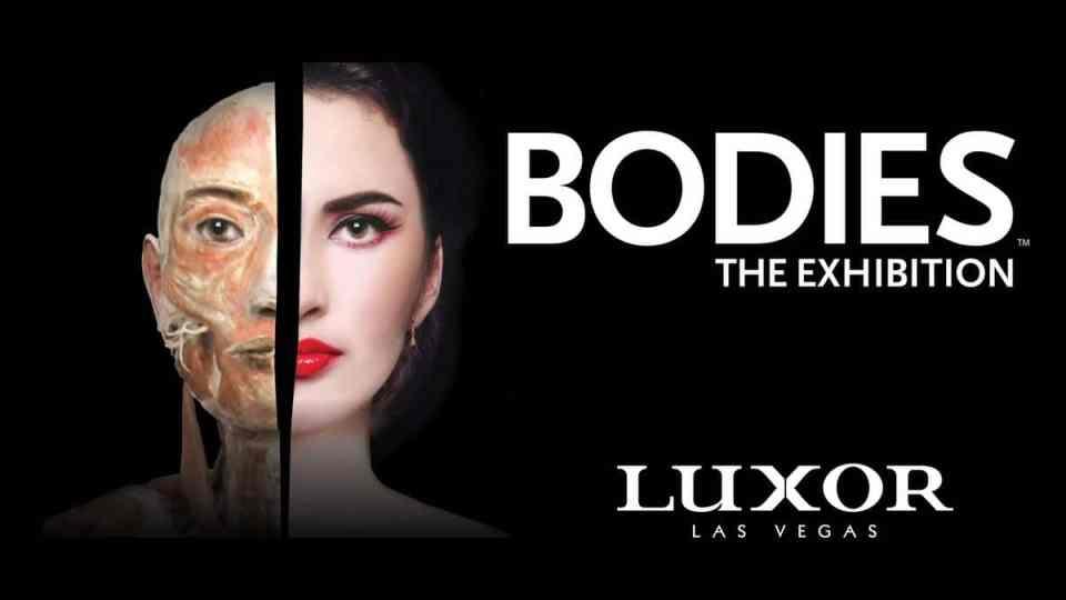 bodies the exhibition discount luxor las vegas