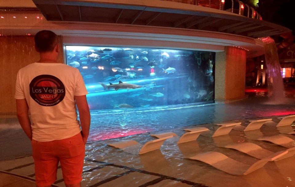 Golden Nugget Las Vegas Shark Tank