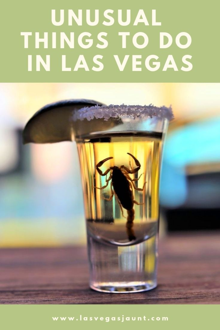 Unusual Things to Do in Las Vegas