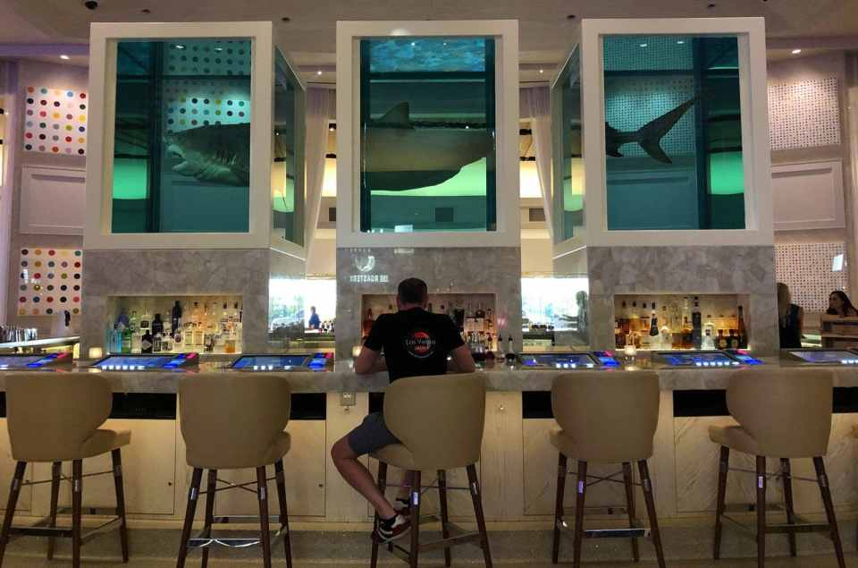 Palms Las Vegas Unknown Bar Shark