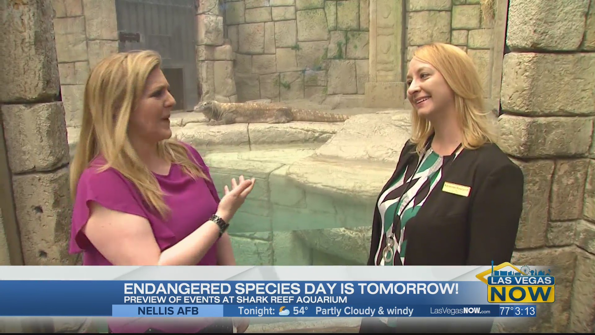 A preview of Endangered Species Day at The Shark Reef Aquarium