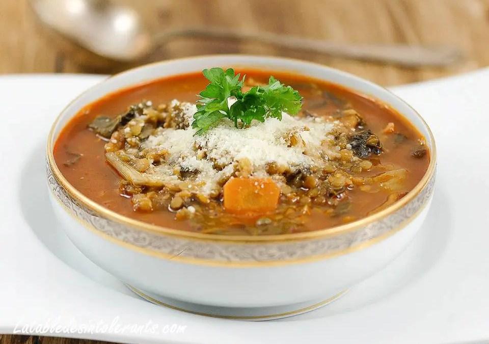 SOUPE ITALIENNE AUX DEUX LENTILLES sans gluten, faible en lactose ou sans lait