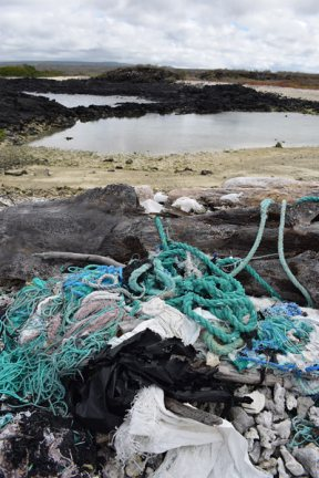 Plastic-on-beach