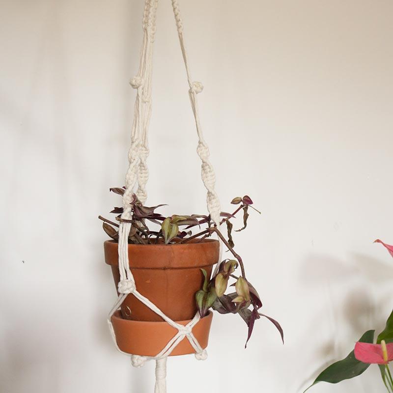 Suspension macramé pour plantes en coton coloris naturel