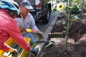 Small Garden, Big Jobs!
