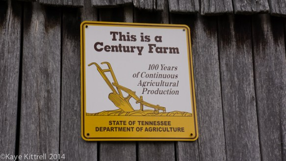 Living Sustainably in Tennessee