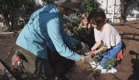Growing Heirloom Tomatoes Part 2- Kaye with Ryan & Lucie