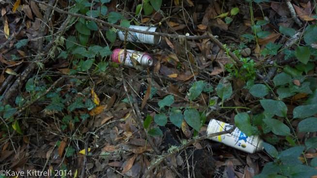 Nature Walk - Name that fungi!-spray cans