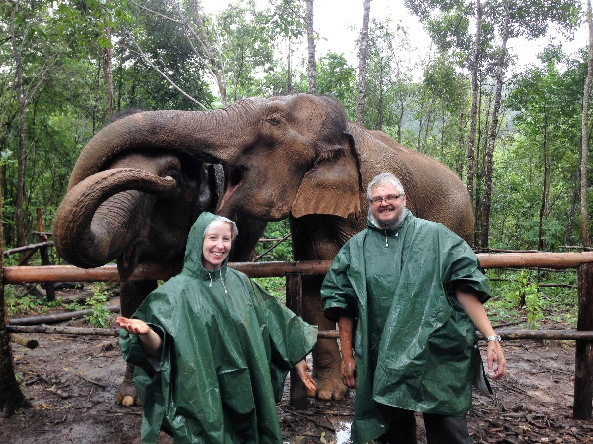Trekking with elephants in Thailand