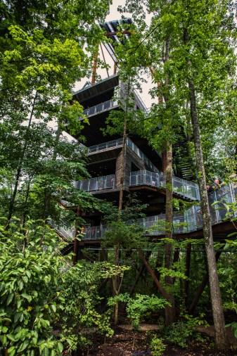 Treehouse Mithun 15