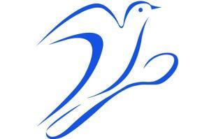 Participations à Cuisiner pour la paix