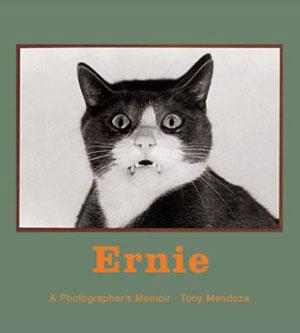 Ernie The Cat