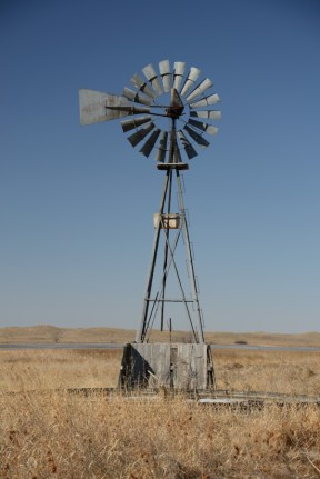 Windmills draw water from the aquifers for livestock and people.