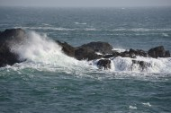 Maine coast off Quoddy Point