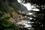 Through the spruce, a coastal cliff stops the surf.