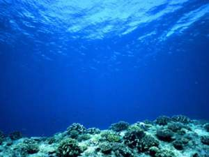 ocean pacifique