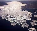 banquise glaciers