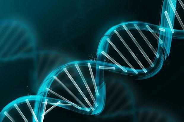 genome-humain