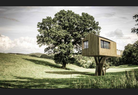La Maison De Larbre Sans Arbre La Terre Du Futur