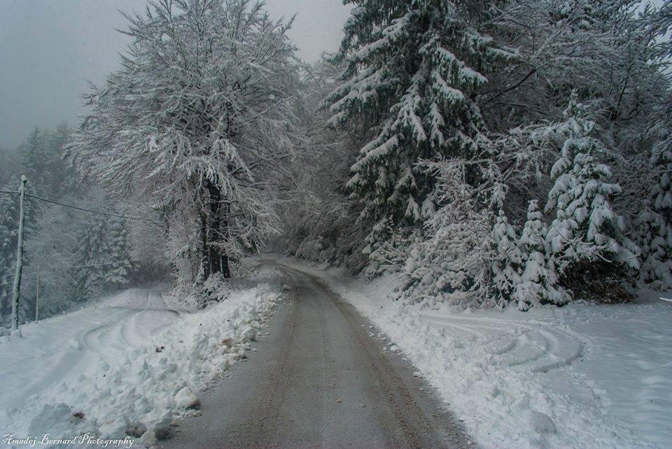 neige-slovenie-nov2015