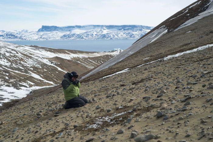 fossiles-antarctique-3