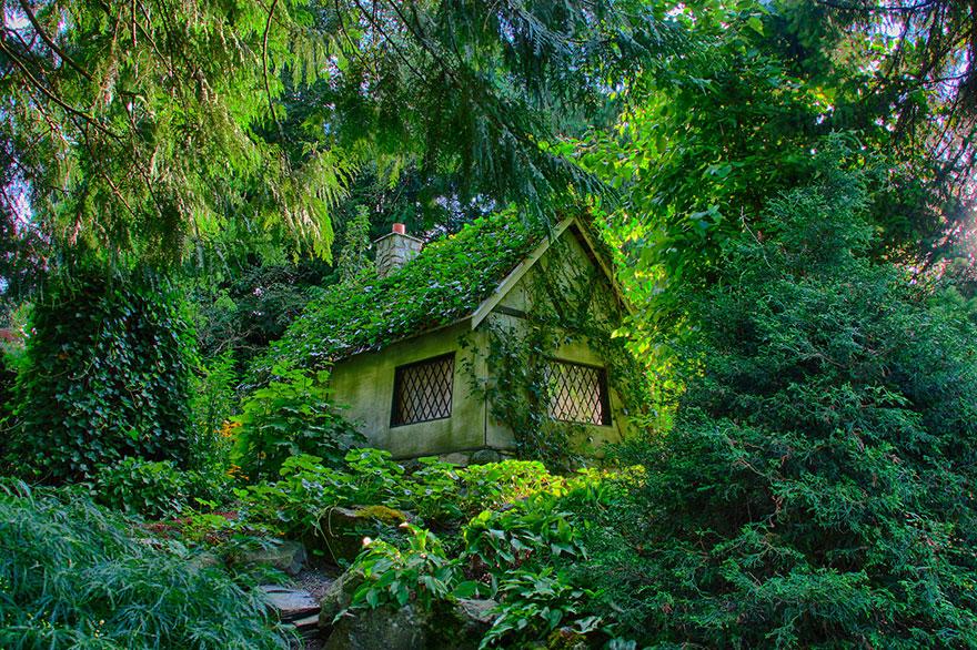 maison cachee dans la foret