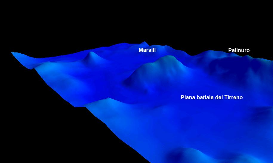 MARSILI-2