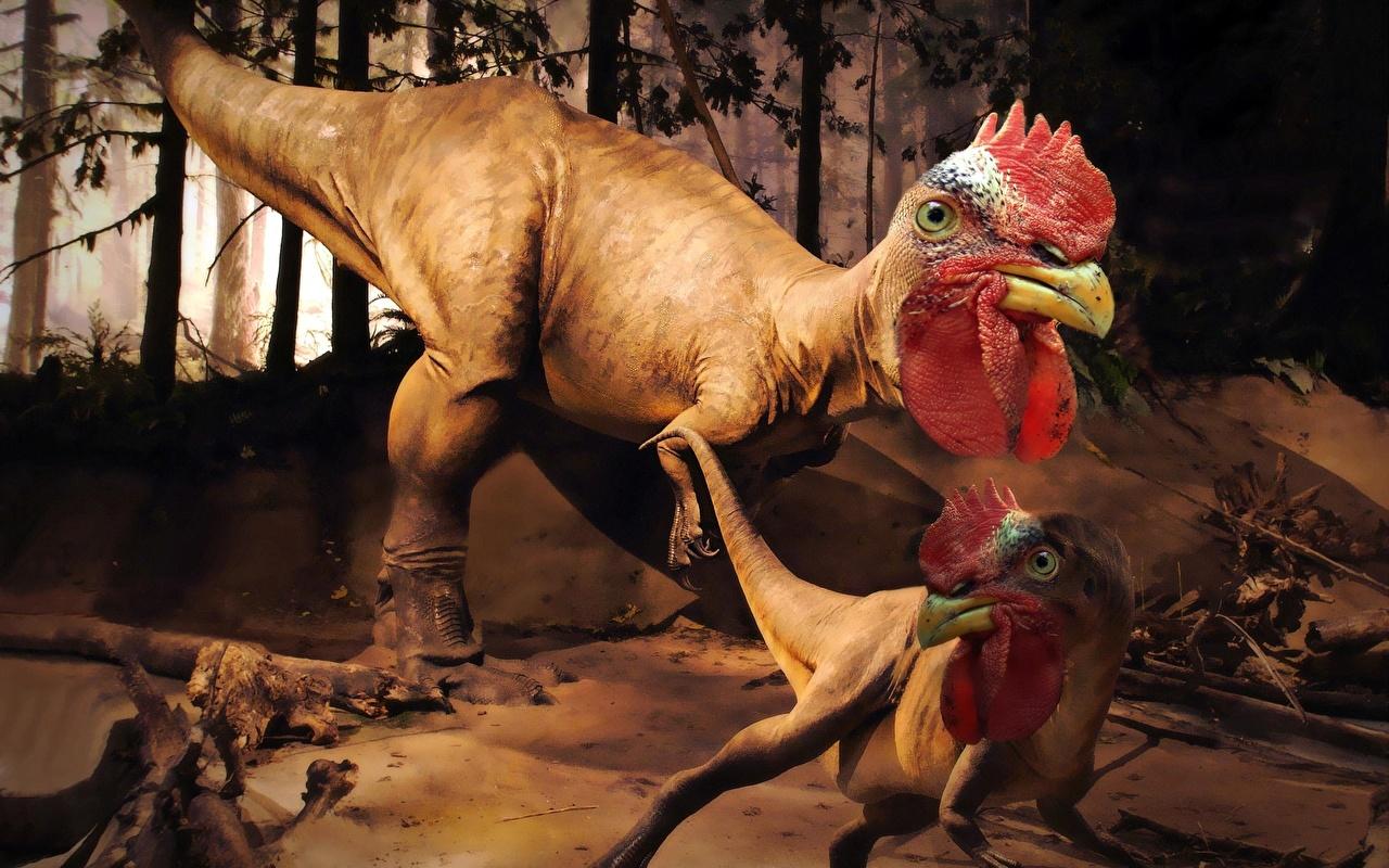 poule-dinosaure