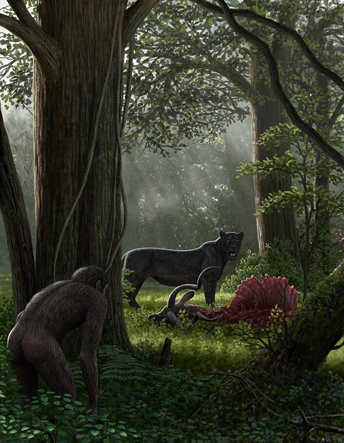 humain-contre-la-faune