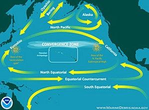 japon radioactivité courant marin