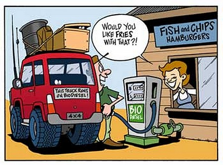 biodiesel animal