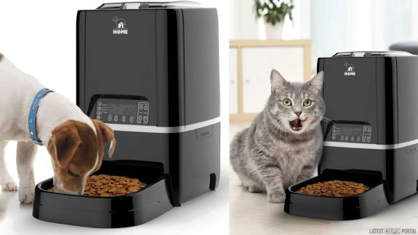 Arthorbot Automatic Pet Feeder