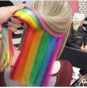 insta-trend hidden rainbow roots