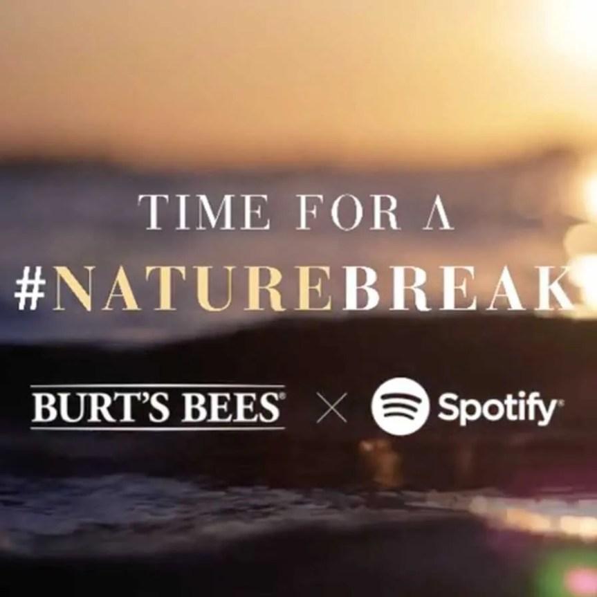 burts-bees-trend-report