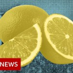 Coronavirus: Extra well being myths to disregard – BBC Information
