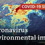 Coronavirus: Good for the surroundings? | Covid-19 Particular