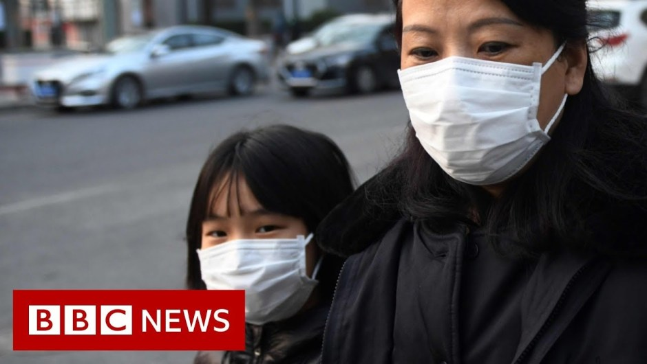 World battles coronavirus outbreak – BBC Information