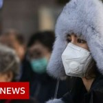 Coronavirus: US bars foreigners who lately visited China – BBC Information