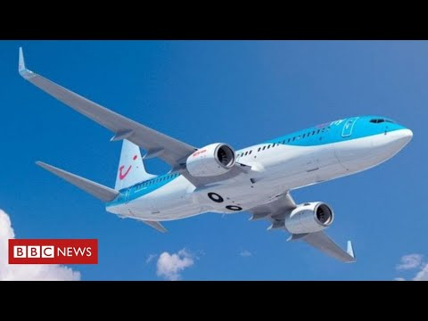 Journey agency insists it's following Covid-19 guidelines after a number of infections on flight – BBC Information