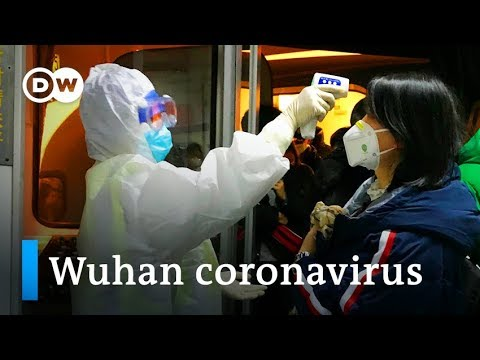 Coronavirus: What we all know thus far | DW Information