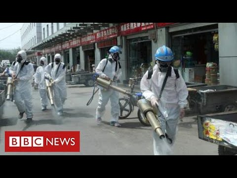 Fears of second wave in China – as questions proceed about origins of coronavirus – BBC Information