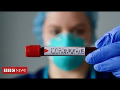 "Greater than 60,000 ""extra deaths"" to date throughout UK coronavirus pandemic – BBC Information"